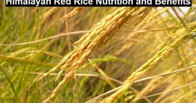 Himalayan Red Rice Nutrition and Benefits